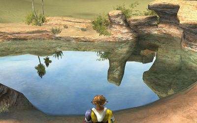 Tidus at the Bikanel oasis